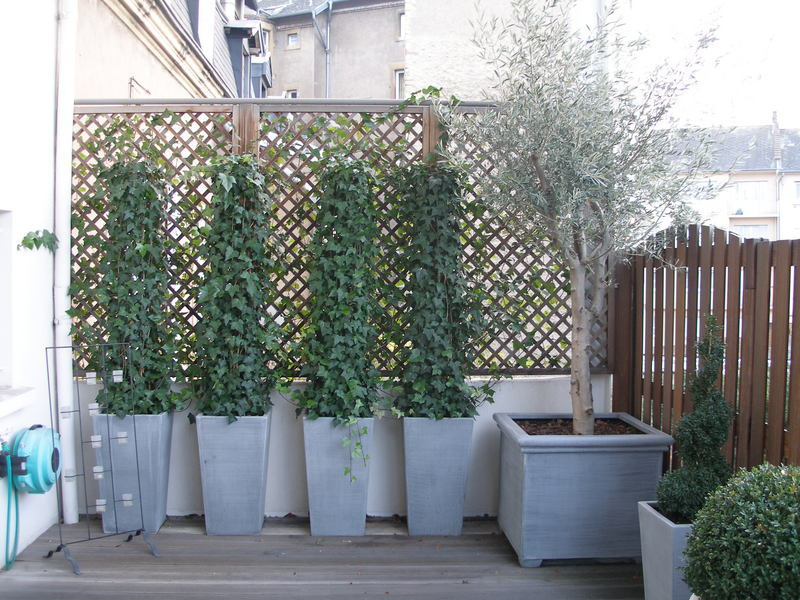 d coration balcon plantes. Black Bedroom Furniture Sets. Home Design Ideas