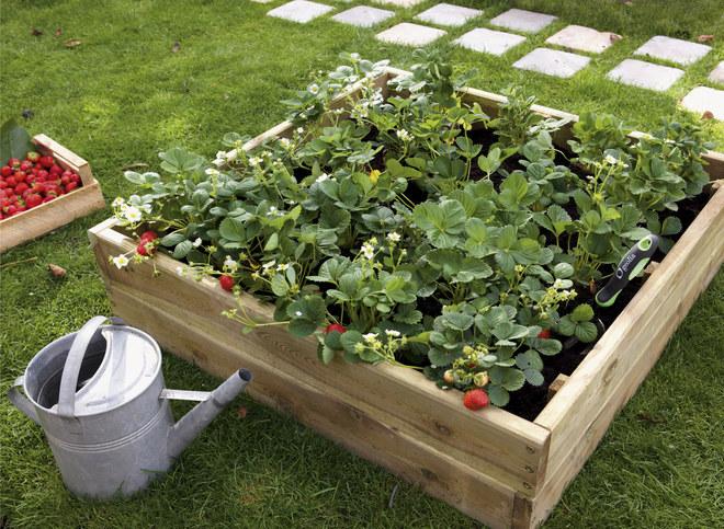 aménagement décoration idee jardin potager - Photo Déco