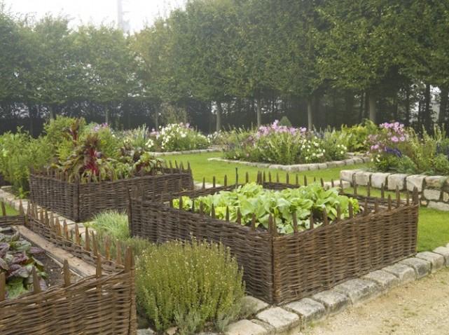 idée jardin potager